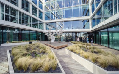 CBRE: Office renegotiations rise 33% in H1